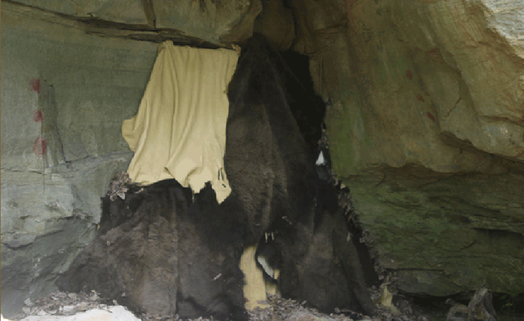 Wall of hides under a rock overhang