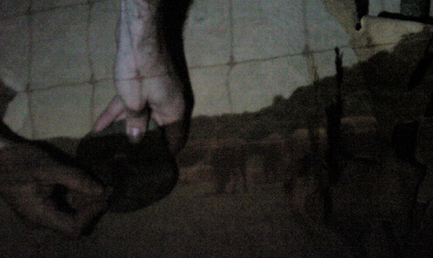 Image projected inside tent (fence in foreground, with bison in field and hill behind).